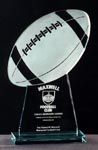 Presented annually to the defensive collegiate football player adjudged by the Maxwell Football Club to be the best in the United States.
